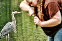 Tiny Heron, Giant Fishing Lady